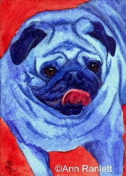Pug Mug - watercolor ACEO by Ann Ranlett