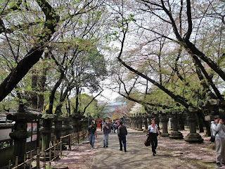 approach of Ueno Toshogu
