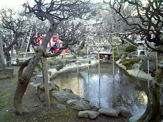 garden in yushima tenjin