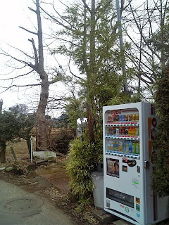 vending machine and bamboo grass