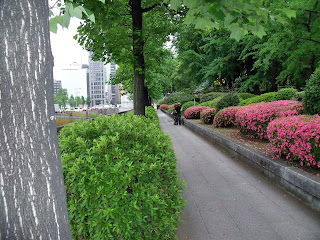 pavement along hibiya park