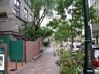 taimei elementary school and miyuki-dori(street)