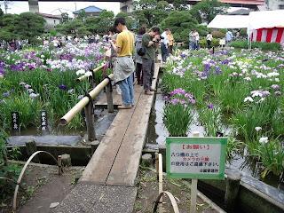 horikiri iris garden