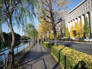 hibiya street in late autumn