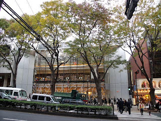 Omotesando in late autumn