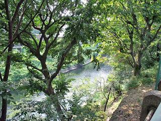 view from sotobori-dori