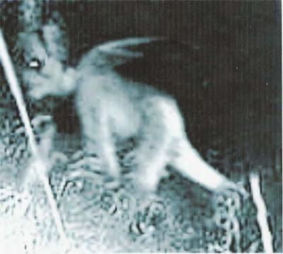 Gambar Hantu: Mei 2008