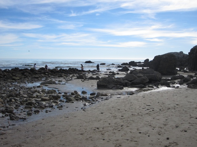 Visit Leo Carrillo at low tide