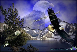The Eagle's Story, Eagle Protection, Eagles