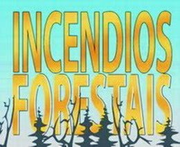 Que hacer en caso de incendios forestales (folleto en PDF):
