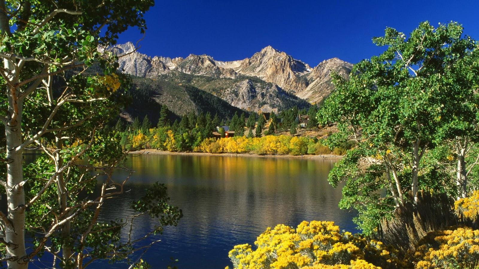 http://4.bp.blogspot.com/_vTQcDXfTeUo/TNKJBJls_oI/AAAAAAAABYA/AbGw9bJDB30/s1600/Nature+Full+HD+www.freehd.blogspot.com+%28160%29.jpg