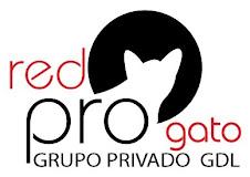 RED PRO GATO, GRUPO PRIVADO GDL