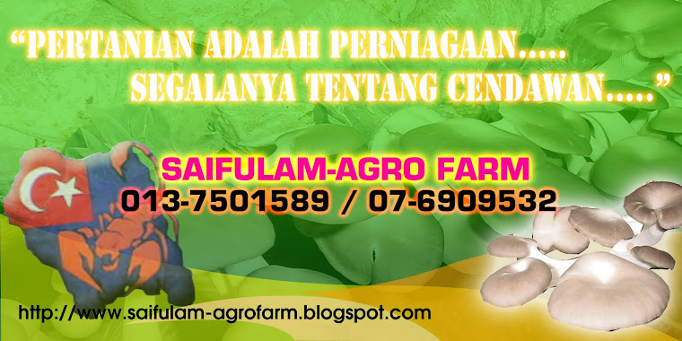 saifulam-agrofarm