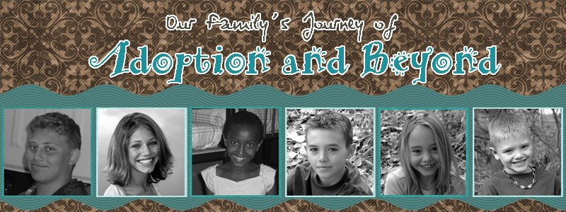 ~Our Family's Journey of Adoption and Beyond~