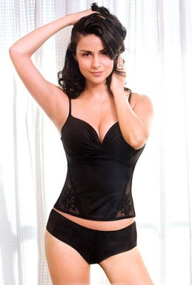 Gul Panag Very Hot Pics