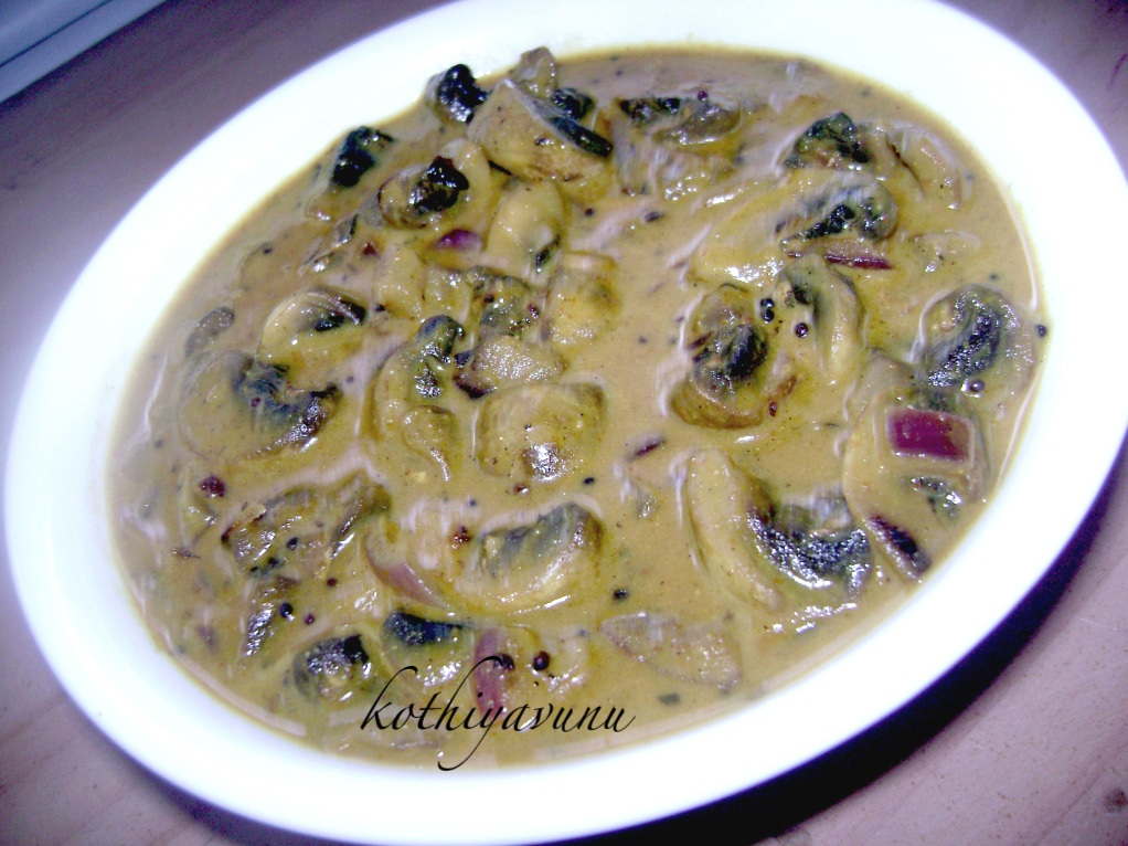 Easy kerala mushroom recipes