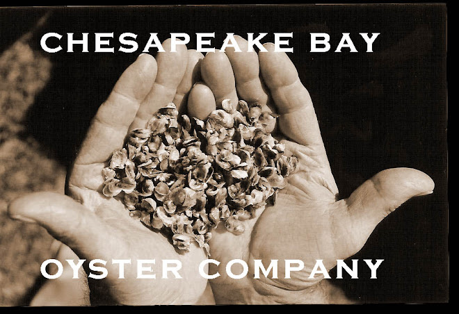 THE OYSTER IS OUR WORLD