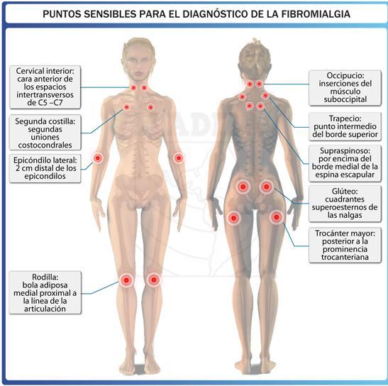 HOSP. REGIONAL HONORIO DELGADO MEDICO INTERNISTA JORGE ROJAS R.