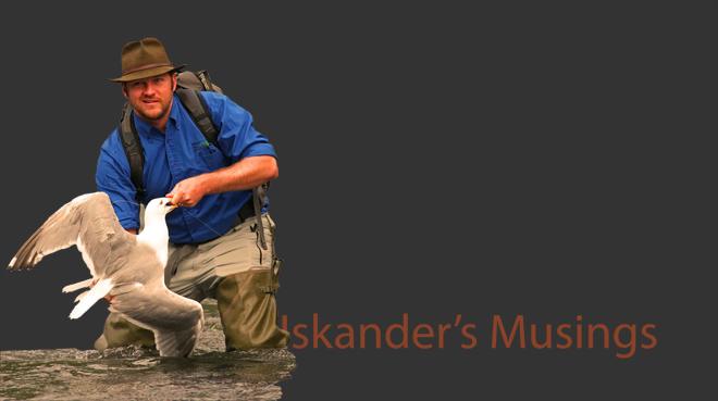 Iskander's Musings