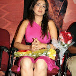 Lakshmi Rai in Pink Dress  Spicy Photo Set