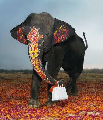 Elefánt modell