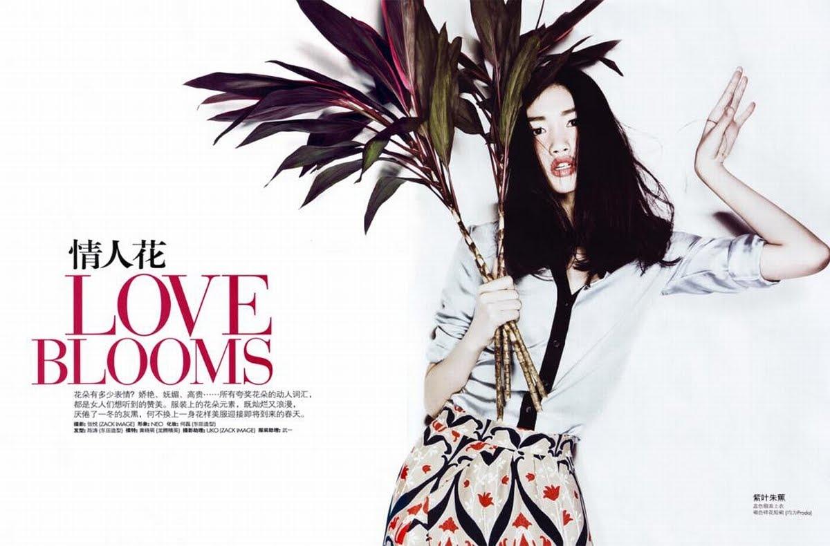 [bloom8]