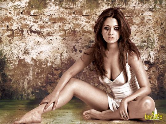 Riya Sen Hot Wallpapers 2010. Riya Sen Cool Wallpaper