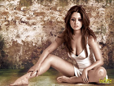 Riya Sen hot photos
