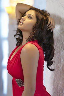 Namitha Sexy Photos