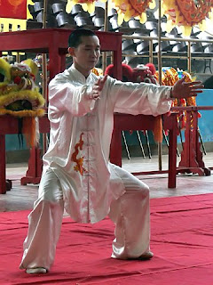 mike feng maitre kung fu