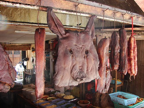 http://4.bp.blogspot.com/_vaBIYoXUg3Q/SZbQdMIz3wI/AAAAAAAADGY/OBpWSKSeXV8/s800/cochon-fenghuang-roerr.jpg