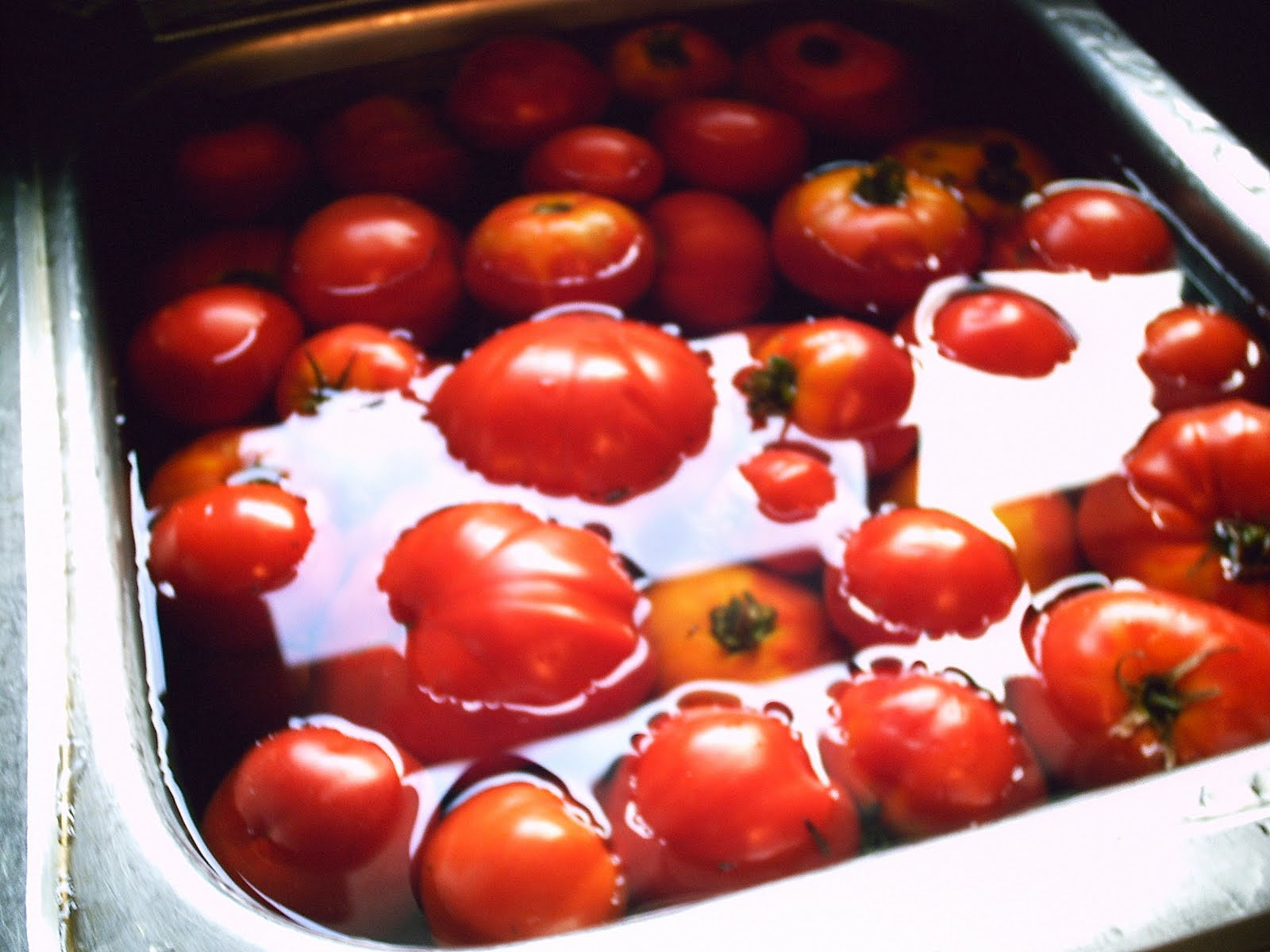 Ehomebody Freezing Tomato Juice