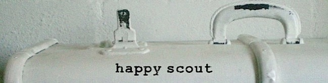 happy scout