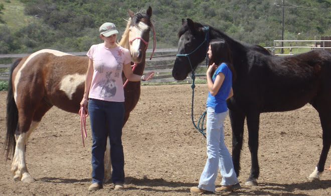 Christe with Tonka instructing Amber with Jaguar in the arena