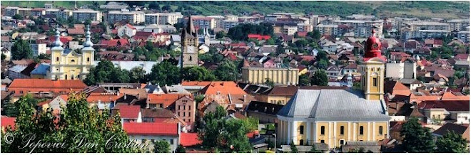 The Old Center of Baia Mare-Rivulus Dominarum