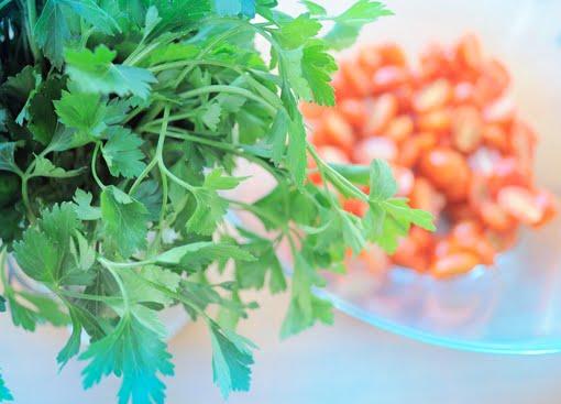 salsa italina