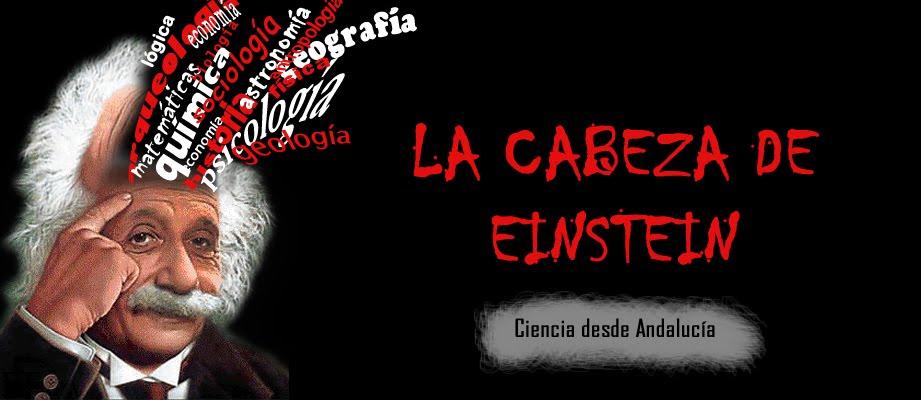 La cabeza de Einstein