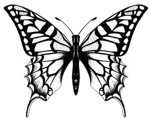 Amazing Butterfly Tattoos With Image Butterfly Tattoo Designs Picture 3