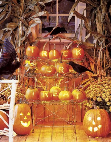 [Small-pumpkins-rack-message-GTL1005-de.jpg]