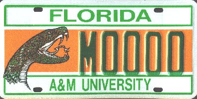 Rattler nation motorists buy 21 594 famu tags for Department of motor vehicles orlando fl