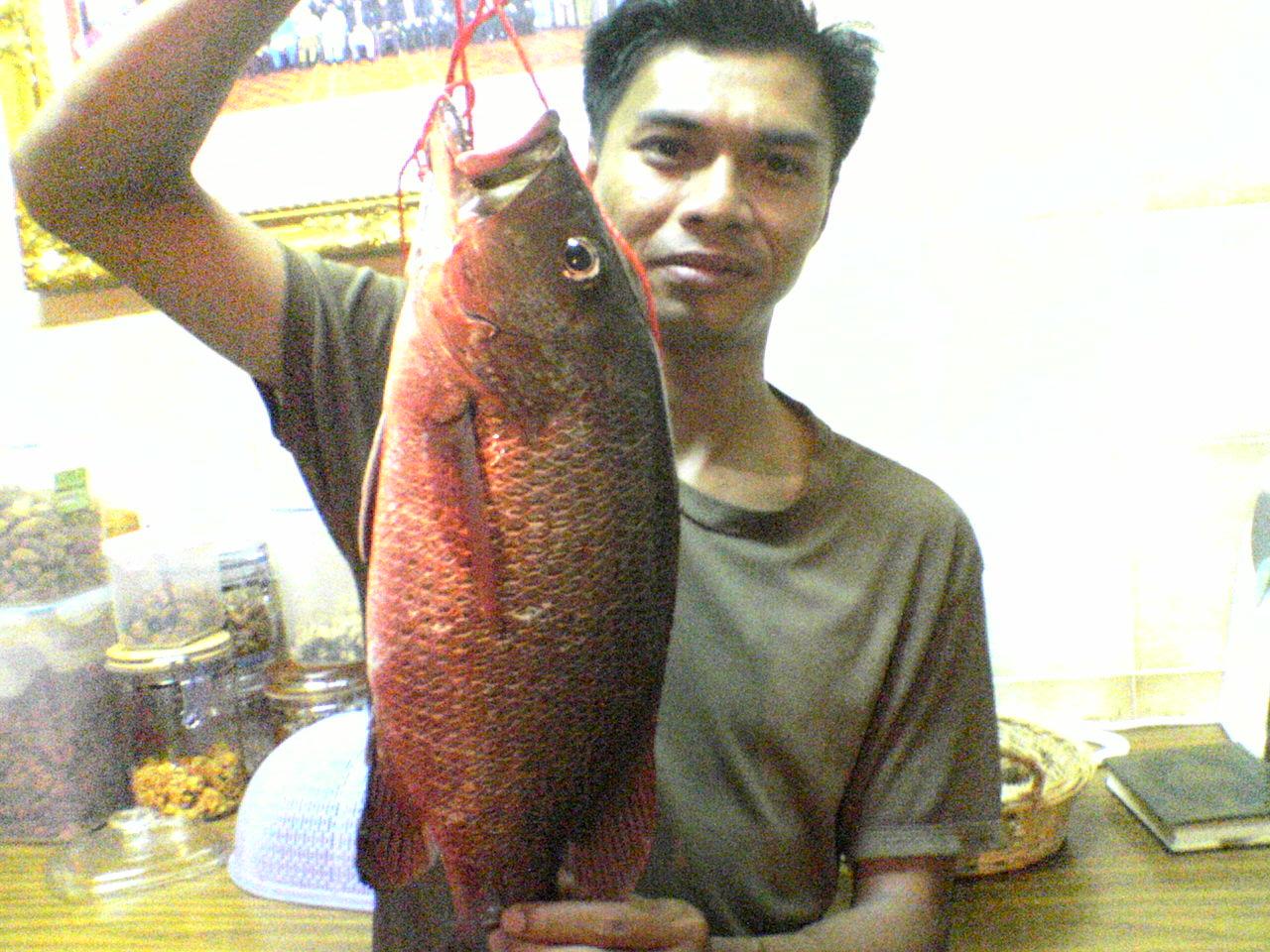 Nelayan Sepanjang Zaman Ungah Masih Ingat Padaku