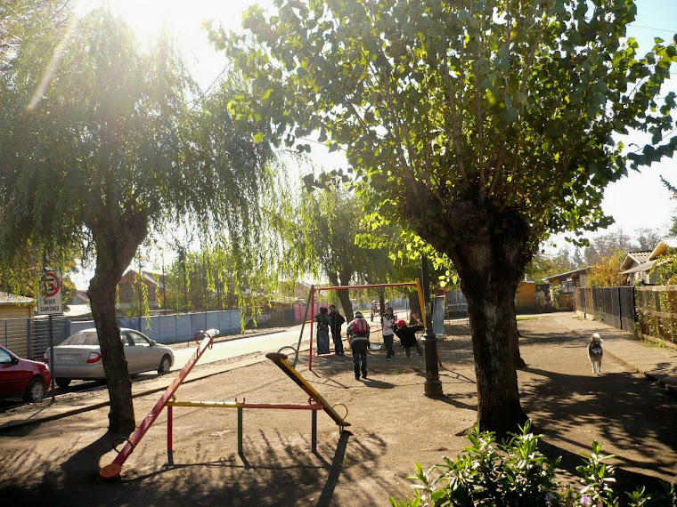 Bulnes, ciudad de las Camelias