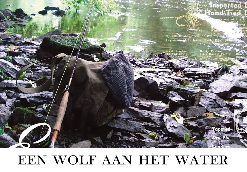 Een wolf aan het water.