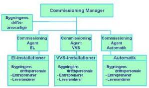 Typisk Commissioning organisation