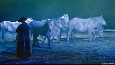 Pferdemagazin Pferd Und Pferdefreundepferd Und Pferdefreunde