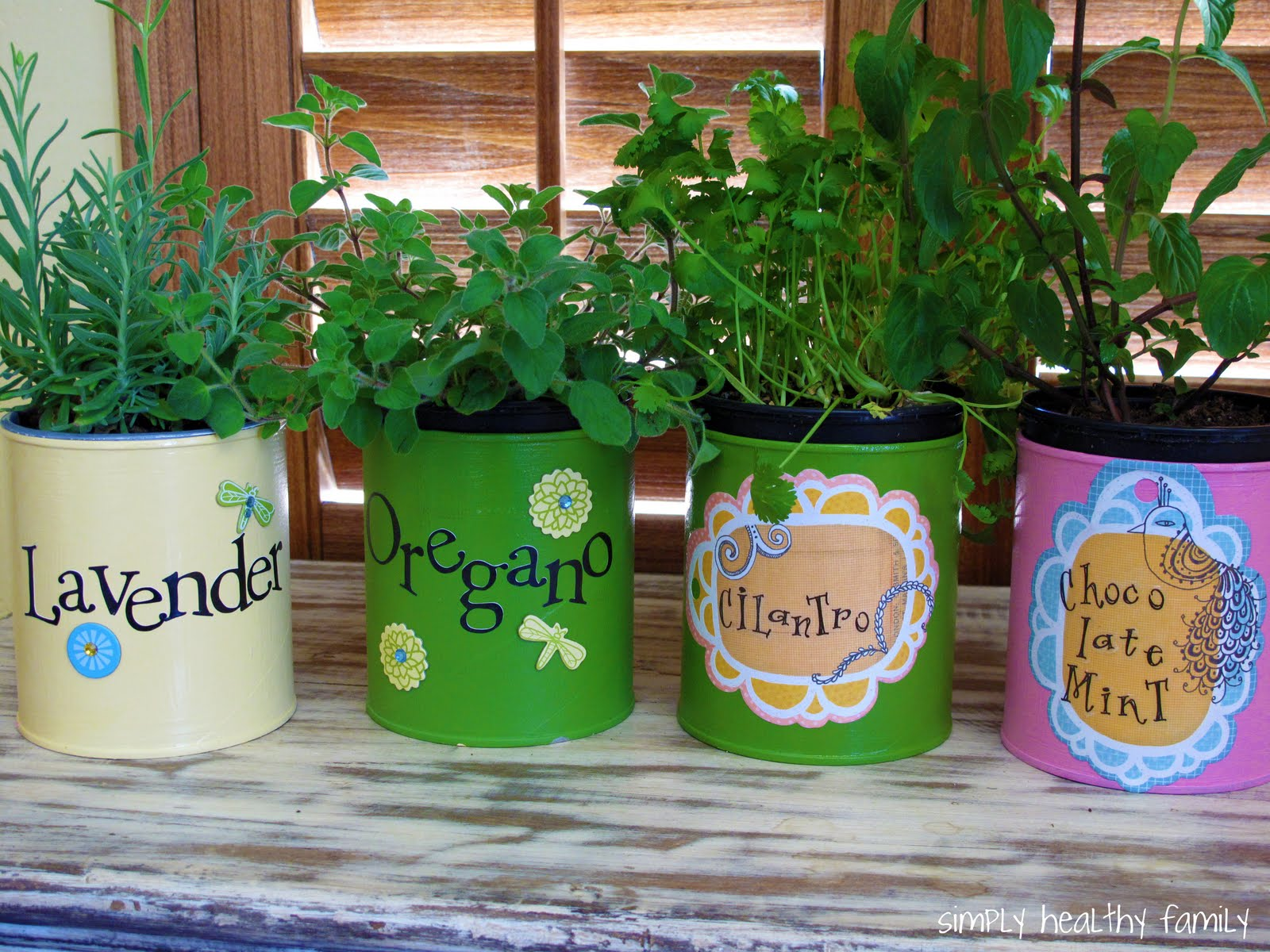 Simply Healthy Family Recycled Indoor Herb Garden