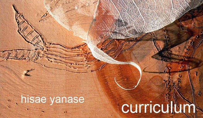 hisaecurriculum