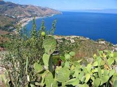 il siciliano secondo Nonciclopedia