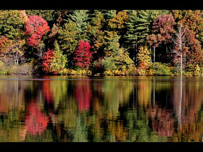 Walden Pond and the beauty of New England foliage