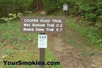Cooper Road Trail